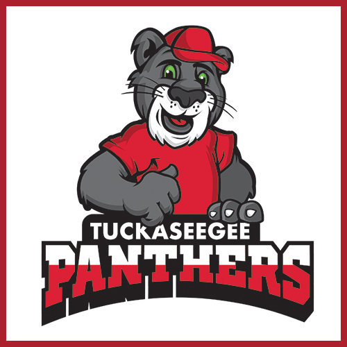 west-blvd-ministry-partners-tuckaseegee-panthers